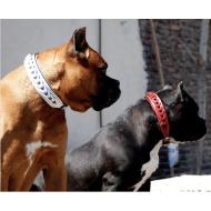 Örgülü Deri Köpek Boyun Tasması 3 cm