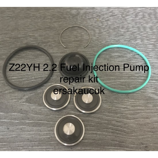 Z22YH Fuel Injection Pump Repair Kit (2.2) (2.0 HPi) 20 teams